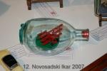 ns-ikar-2007_102