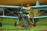 ns-ikar-2012_019