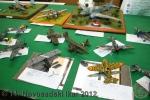 ns-ikar-2012_032