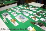 ns-ikar-2012_054