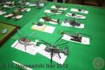 ns-ikar-2012_083