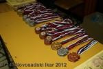 ns-ikar-2012_101